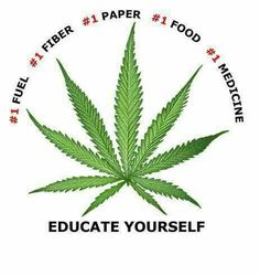 People should be able to grow marijuana, just like having a vegetable garden. To have medical marijuana legal to patients and for them not being able to grow it, is wrong. A great ebook that has interesting recipes for Dragon mints and Cannabis chocolates