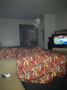 This pic was just taking by a guy in a hotel he heard something and took this pic with his phone 9/28/13
