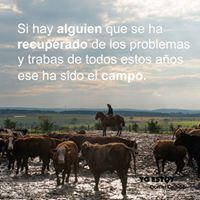 Twitter Twitter, Movies, Movie Posters, Frases, Country, Animales, Films, Film Poster, Popcorn Posters
