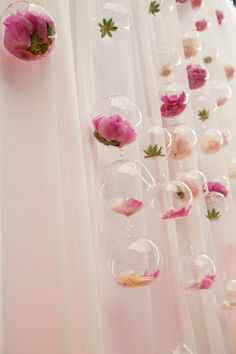 Hanging floral glass bubbles