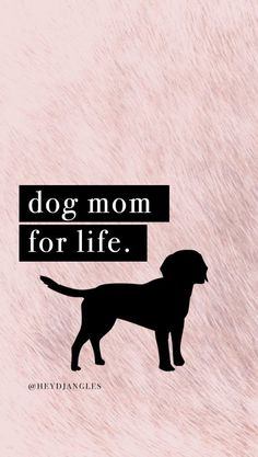 Check out our free HD dog quote wallpapers and tech backgrounds right here - all Cute Cat Quotes, Dog Lover Quotes, Dog Quotes Funny, Dog Lovers, Quotes Wallpaper For Mobile, Dog Wallpaper, Short Dog Quotes, Play Quotes, Crazy Dog Lady
