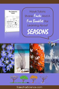 What exactly is a season?  Grab this free booklet for learning about seasons! Homeschool Science Curriculum, Teaching Science, Science Activities, Science Projects, Homeschooling, Astronomy Science, Earth Science, Beginning Of Spring, Science Programs