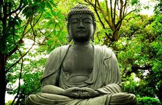 Prescription: REVIVE. Turning to Buddhism vs.12 Step Program. #Health #Sobriety #Careers #Wellness #AA