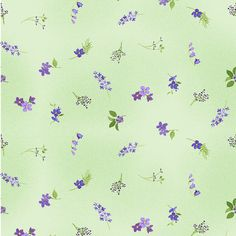 Ditsy Floral, Floral Fabric, Floral Prints, Blue Sky Studios, Mint Green Background, Ishikawa, Pretty Green, Cotton Quilting Fabric, Star Flower
