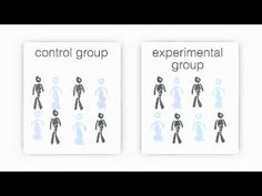 What is a control group?