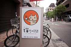 'Cat Time' (Neko No Jikan) is a cat cafe that opened in 2004 as Osaka's first cat cafe where customers pay by the hour to enjoy the company of cats, Osaka, Kansai region, Japan.
