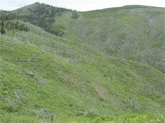 Missoula, Missoula County, Montana Land For Sale - 80 Acres