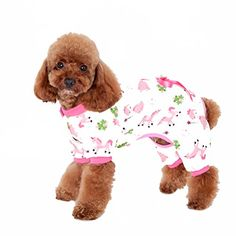 Uniquorn Pet Clothes Cute Dog Clothes New Home Service Dog Pajamas Four Feet Cotton Printing Teddy Clothes *** Continue to the product at the image link.Note:It is affiliate link to Amazon.