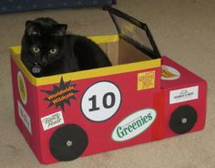Ernie, a member of Wally's pit crew, purrforms the pre-race check.