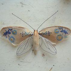 Mr. Finch's moths, beautiful