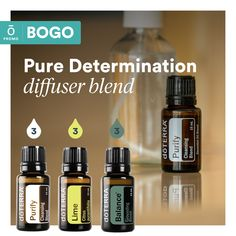 Buy Island Mint® 15 mL, get Purify 15 mL free! Essential Oil Companies, Essential Oils 101, Essential Oil Diffuser Blends, Mint Oil, Doterra Oils, Doterra Diffuser, Osho, Lime, Pure Products