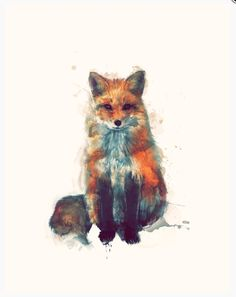 Sweet little Fox