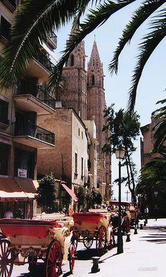 Been Here...Mallorca - Palma -Kutschen vor der Kathedrale...Splendid!