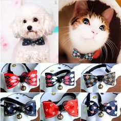 FREE Worldwide SHIPPING! $16.80 NOW $12.80 Pet Party Bow Tie with Bell This classy colorful bow tie with bell charm is perfect for your pet to stand out from the crowd at parties! It is perfect for birthday parties, wedding, gathering events and family photos! #discountvault