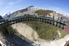 The Glacier Adventure Tours have been an iconic part of a visit to the Alberta Rockies for years. #travel #alberta