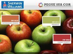 SW 6635 - Determined Orange | SW 6711 - Parakeet | SW 6864 - Cherry Tomato