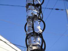 「クサリ樋の氷も増す」  2013/01/18  Ooe-office,atelier