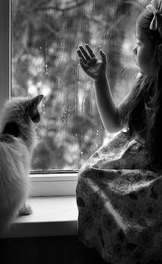 Image result for cats kids and rain