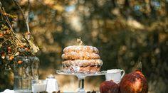 Pumpkin cake  Photo by Alexander Jančo