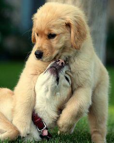 So sweet! :)
