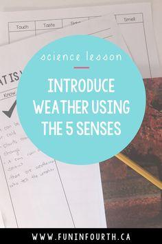 Primary Science, Science Classroom, Science Fair, Classroom Resources, Teaching Science, Science Education, Grade 3, Fourth Grade, Third Grade