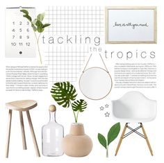 tackling the tropics by rachaelselina on Polyvore featuring polyvore interior interiors interior design home home decor interior decorating SCP OKA Laura Cole Elle