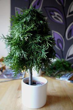 Choinki z gałęzi tui Tree Decorations, Christmas Crafts, Christmas Trees, Herbs, Diy Crafts, Holiday Decor, Floral, Plants, Holiday Crafts
