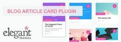 Divi Theme Plugins