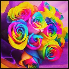 Pretty Rainbow Flower Wallpapers) – Free Backgrounds and Wallpapers Beautiful Flowers Images, Beautiful Flowers Wallpapers, Unique Flowers, Flower Images, Beautiful Roses, Pretty Flowers, Flower Background Wallpaper, Butterfly Wallpaper, Flower Backgrounds