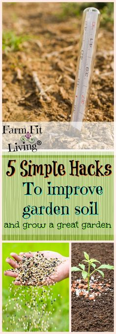 Organic Gardening Ideas Is your garden soil not up to par for growing great crops? These 5 simple hacks to improve garden soil will help you to get your soil back on the right track. Garden Soil, Garden Beds, Garden Landscaping, Garden Paths, Homestead Survival, Survival Prepping, Garden Stand, Box Garden, Soil Improvement