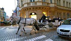 Un week-end éclair à Prague et 25 choses à «tchéquer» | A la fin de la route Week End, Horses, Animals, Animales, Animaux, Animal, Animais, Horse