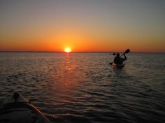If you'd like to see Florida as it was when the Calusa Indians were the welcoming committee for European settlers, come to the Merritt Island National Wildlife Refuge today! Merritt Island, Space Travel, Kayaking, Places Ive Been, Sunrise, Wildlife, Coast, Florida, Explore