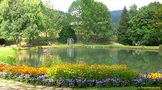 Parco dell'Orecchiella - Garfagnana - Lucca - Tuscany