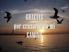 Nadie se cruza por azar en tu vida - Paulo Coelho - YouTube