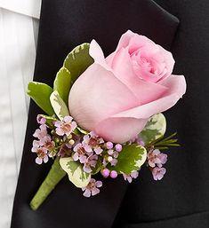 roos. paars. roze. groen. blad.