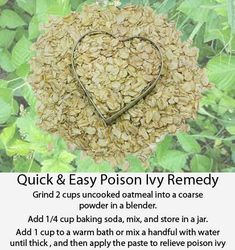 Poison Ivy Remedy - Quick & Easy to fix.