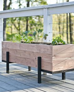 Großer Blumenkasten: Wie man Salat auf dem Balkon anbaut Large flower boxes: How to build salad on the balcony – The Manowerker Diy Wood Planter Box, Cedar Planters, Large Planters, Planter Ideas, Outdoor Planters, Vegetable Planter Boxes, Steel Planter, Balcony Planters, Balcony Ideas