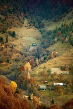 Autumn in the Carpathian Mountains - Ukraine