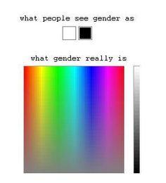 writing gender