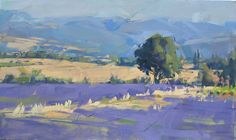 Beautiful landscape of a field of lavander by Maggie Siner--a master with the flat brush.