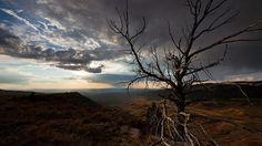 Wyoming Wildscapes – Fubiz™