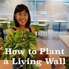 Florafelt vertical garden systems make living walls easy. The best and most affordable green wall system available. Vertical Garden Systems, Vertical Garden Design, Vertical Plant Wall, Vertical Garden Plants, Vertical Planting, Bristol Garden, Bristol Uk, Vertikal Garden, Garden Wall Designs