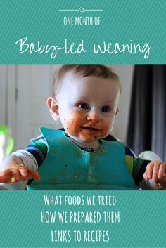 A list of all the foods Rory ate in his first month of baby-led weaning (BLW) Split into food groups and details of how they were prepared with links to recipes.