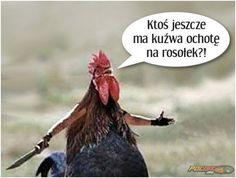 Rosołek ;) www.pocisk.org Funny Memes, Jokes, Statements, Haha, Pictures, Dance, Google, Frases, Fotografia