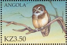 Spectacled Owl stamps - mainly images - gallery format