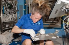 NASA astronaut Karen Nyberg, Expedition 37 flight engineer, works with a plant experiment in the Destiny laboratory of the International Space Station.