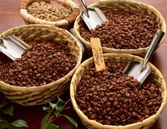 Brazil Blossom coffee beans are a limited edition which will take you to a secret garden filled with aromatics of lillies and jasmine