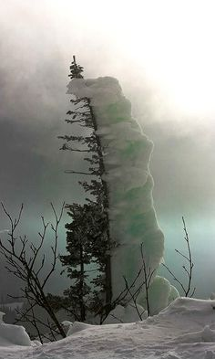 Winter Scenery --- Snow Piling Up on One Side of the Tree ---Photo credit: Sergey Andreev All Nature, Amazing Nature, Images Lindas, Beautiful World, Beautiful Places, Cool Pictures, Beautiful Pictures, Funny Pictures, Funny Pics