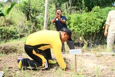 GREEN FOREST INDONESIA Gym Equipment, Exercise, Sports, Ejercicio, Hs Sports, Excercise, Work Outs, Workout Equipment, Sport