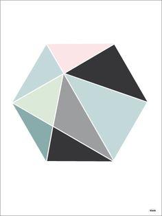 Hexagon color - illustrationer - TAVLOR & POSTERS